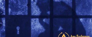 Создателя AriseCoin приговорили к тюрьме за крупное мошенничество